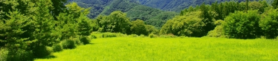 農業IoTイメージ